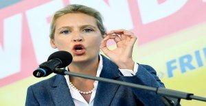 AfD-Femme Alice Weidel vit maintenant...