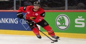 Hockey sur glace: NHL-Éloge de SCB, l'Attaquant de Tristan Scherwey - Vue